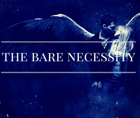the-bare-necessity