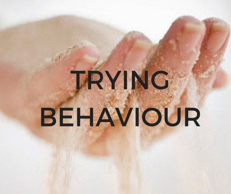 TRYINGBEHAVIOUR