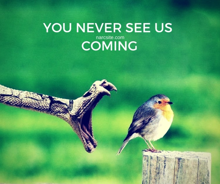 you-never-see-us-coming