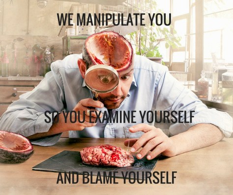 WE MANIPULATE YOU