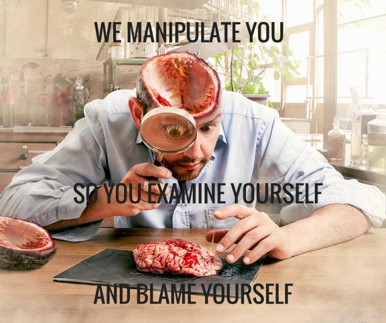 WE MANIPULATE YOU