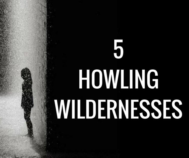 5HOWLINGWILDERNESSES