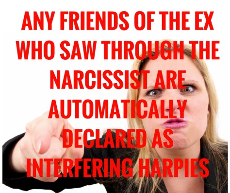 ANY FRIENDS OF THE EX WHO SAW THROUGH THE NARCISSIST ARE AUTOMATICALLYDECLARED AS INTERFERING HARPIES.jpg