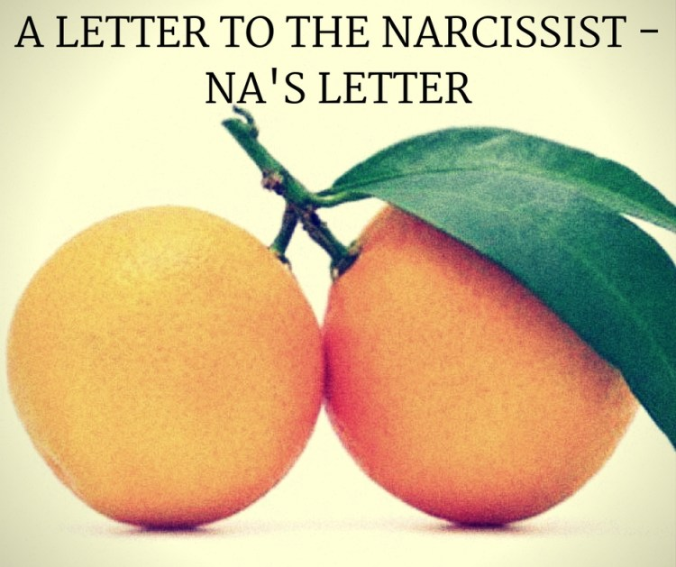 A LETTER TO THE NARCISSIST -NA'S LETTER