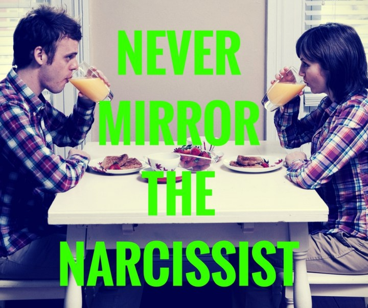 NEVERMIRRORTHENARCISSIST
