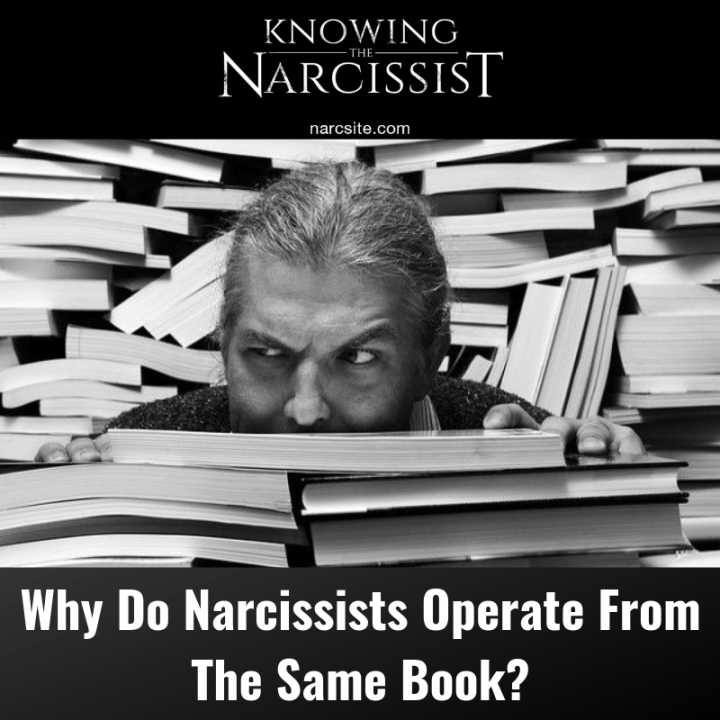 Why Do Narcissists Operate From The Same Book?