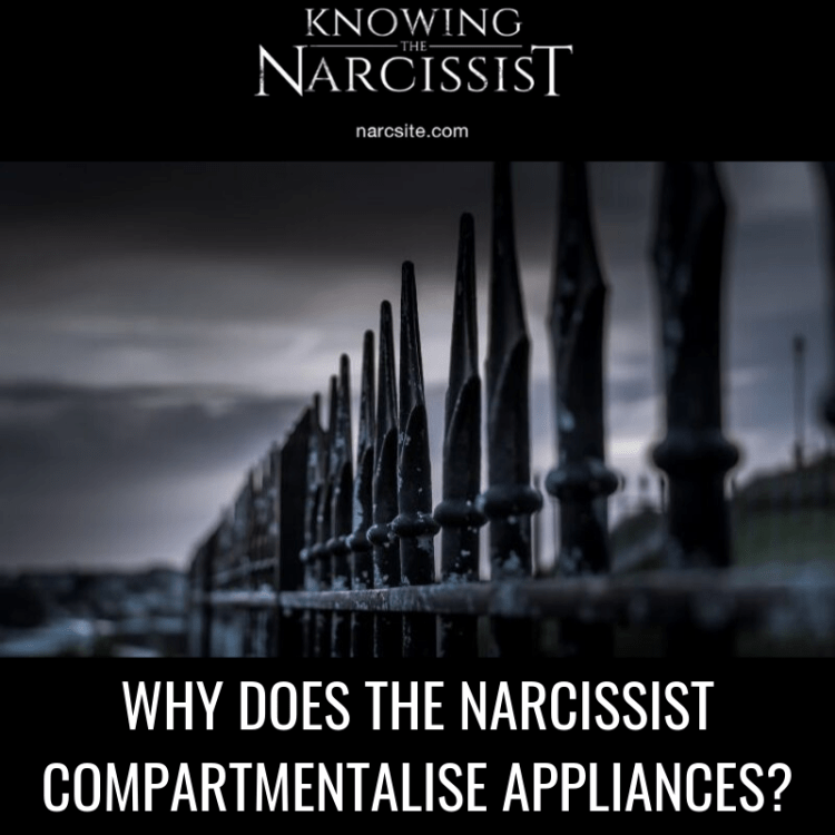 WHY DOES THE NARCISSIST COMPARTMENTALISE APPLIANCES?