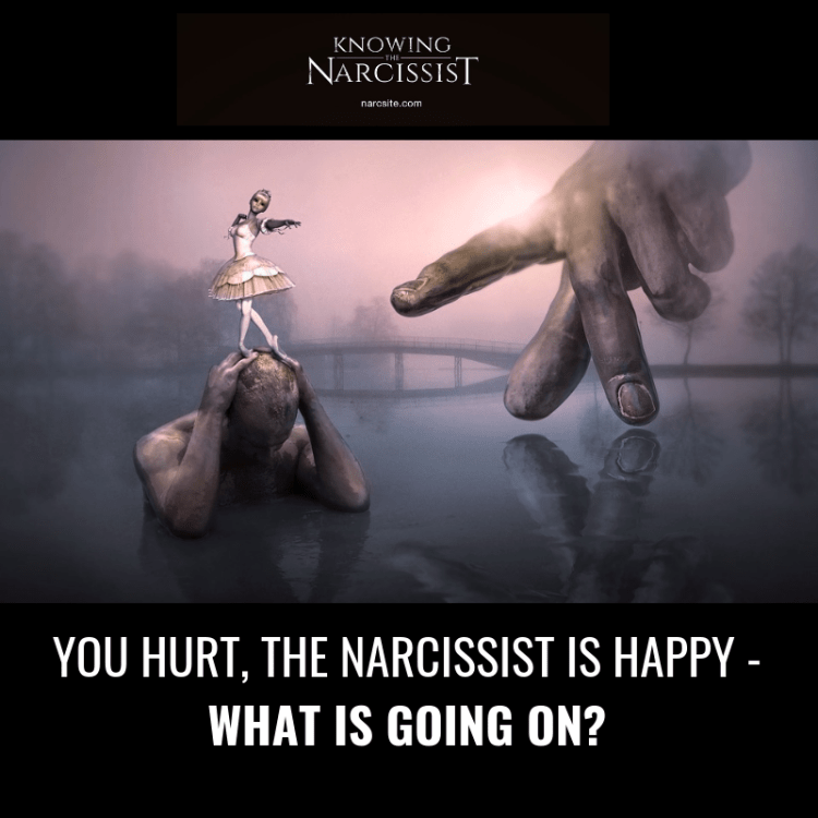 YOU HURT, THE NARCISSIST IS HAPPY - WHAT IS GOING ON?