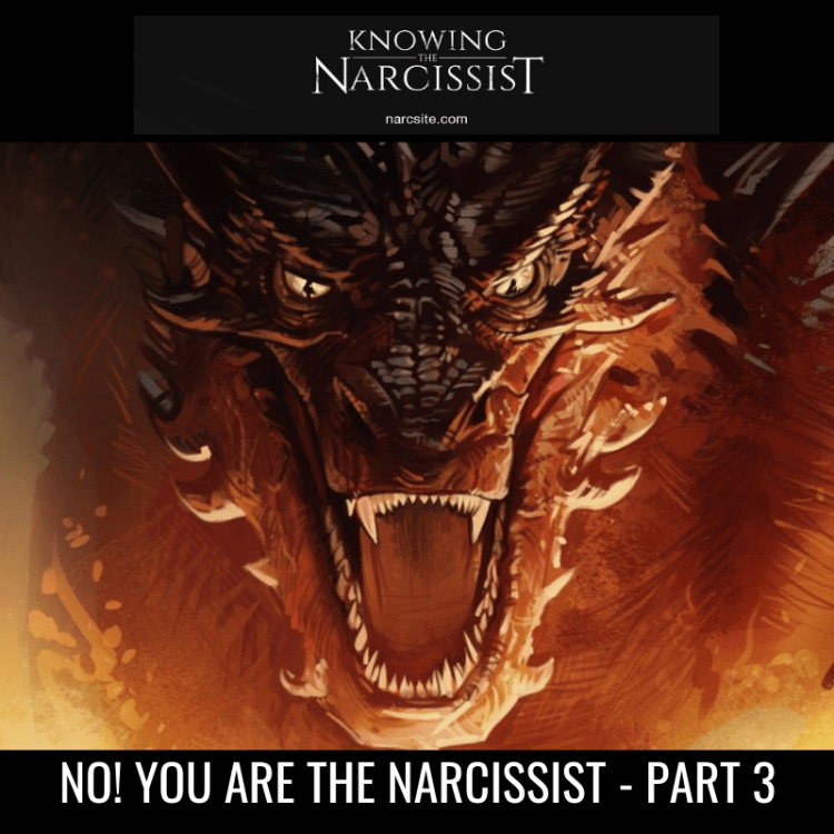 NO! YOU ARE THE NARCISSIST - PART 3