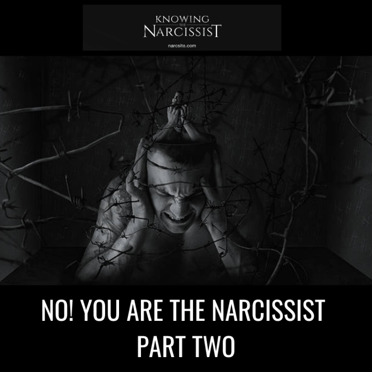 NO! YOU ARE THE NARCISSIST PART TWO