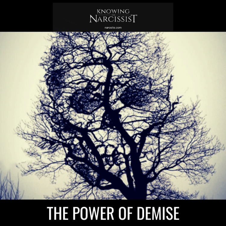 THE POWER OF DEMISE