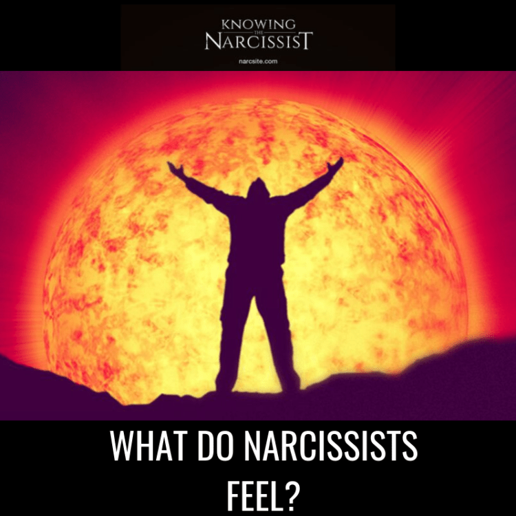 WHAT DO NARCISSISTS FEEL?
