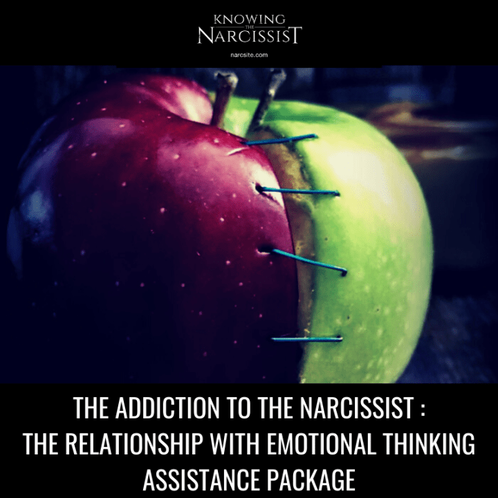 THE ADDICTION TO THE NARCISSIST _ THE RELATIONSHIP WITH EMOTIONAL THINKING ASSISTANCE PACKAGE