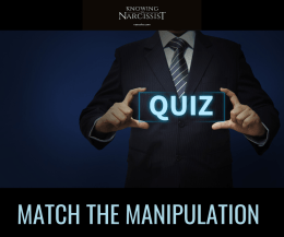 MATCH-THE-MANIPULATION
