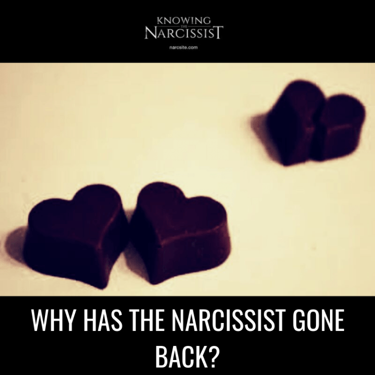 WHY-HAS-THE-NARCISSIST-GONE-BACK
