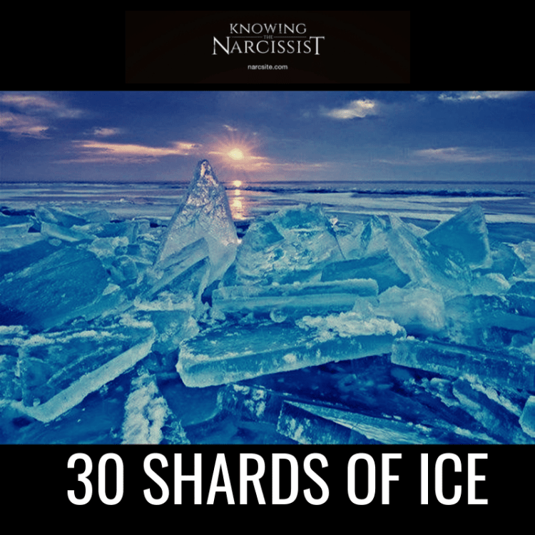 30-SHARDS-OF-ICE
