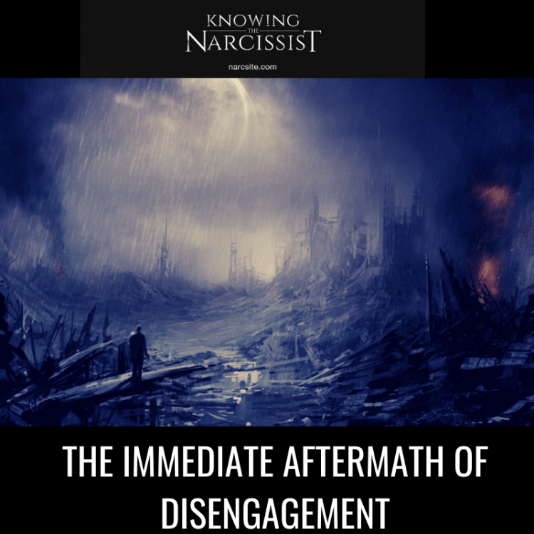 THE-IMMEDIATE-AFTERMATH-OF-DISENGAGEMENT