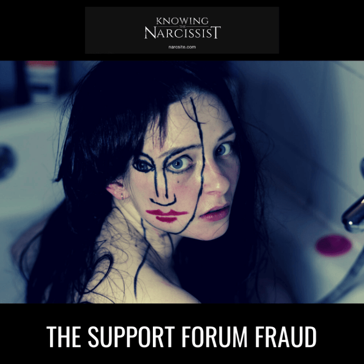 THE-SUPPORT-FORUM-FRAUD