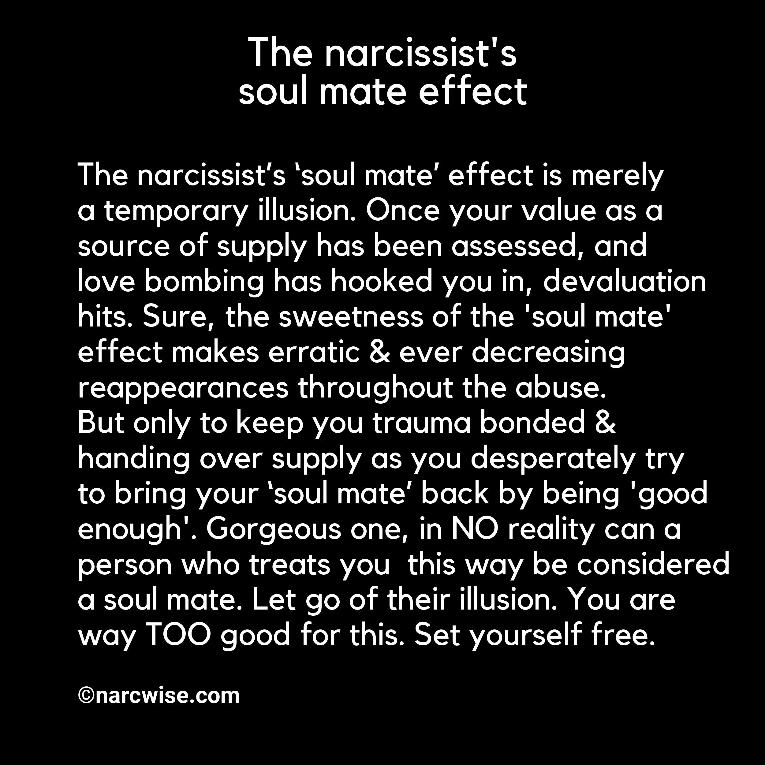 Image result for soul mate narcissist