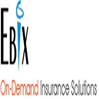 Ebix Software India Pvt. Ltd