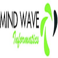 Mind Wave Informatics