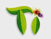 *Werbung* Ti Tee Produkttest 4