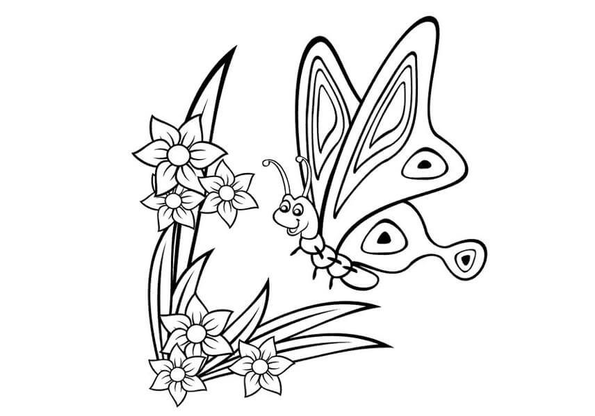 5 Contoh Sketsa Gambar Kupu Kupu Hinggap Di Bunga Cek Sih