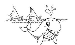 sketsa gambar ikan paus