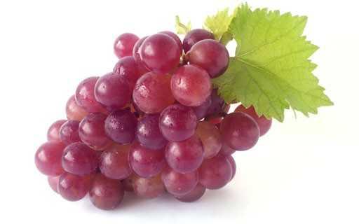 Листья винограда полезные свойства и противопоказания