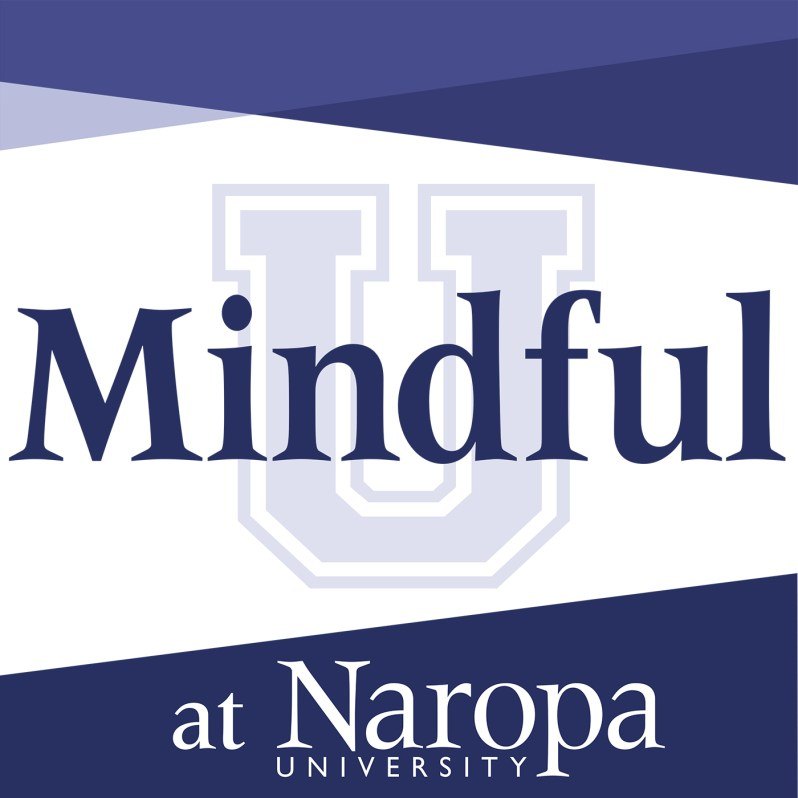 MindfulU-Graphic