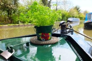 Buckby bucket