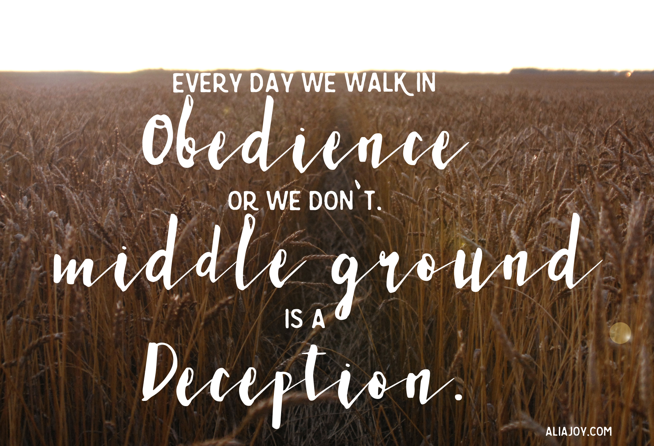wild-obedience