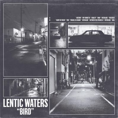 cover lentic waters