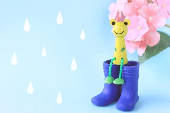 雨靴から顔を出すカエル