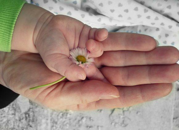 重なる母と子の手のひら