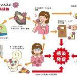 ノロウイルスの感染経路は?空気感染やトイレ、唾液から予防する方法