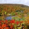 十和田八幡平で日帰り紅葉狩りと温泉グルメのおすすめプラン