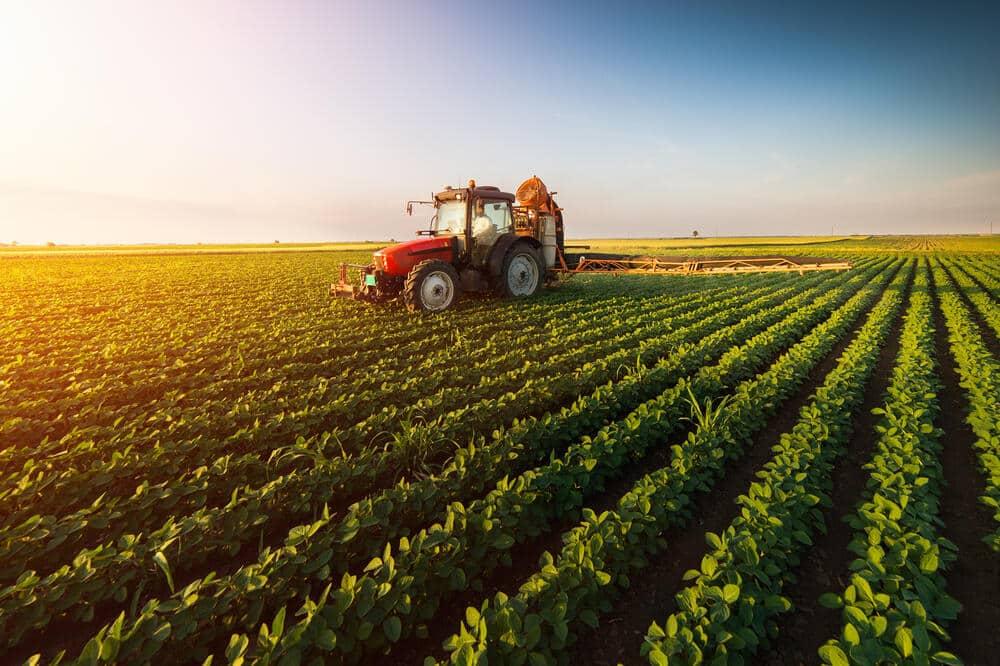 """UDARILI NA SRPSKOG SELJAKA """"Vlada smanjila subvencije poljoprivrednicima"""" 1"""