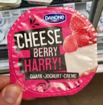 Danone Cheese Berry Harry Quark-Joghurt-Creme