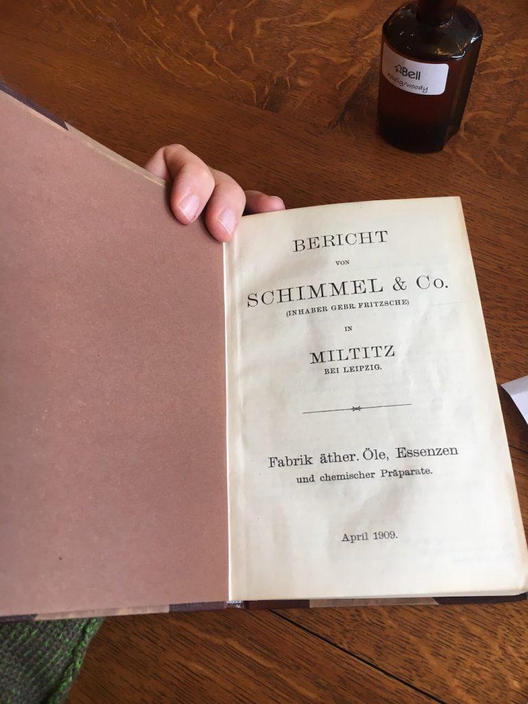 Schimmel-Bericht