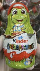 Ferrero Kinder Überraschung Motiv Schildkröte