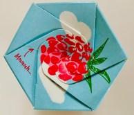 Nestlé Coclait Chips Himbeere Rosettenblume von oben