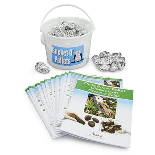 Owl Pellet Class Kit