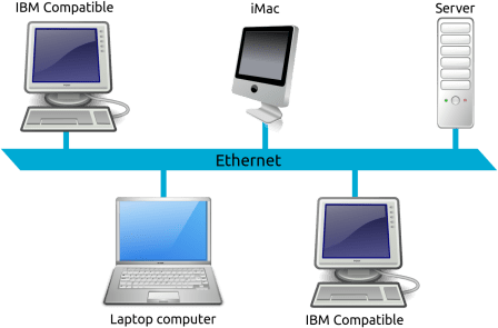 Local area network LAN for your backup