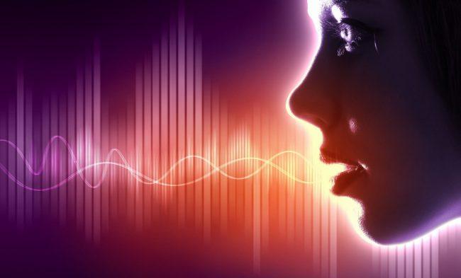 voice-650x393