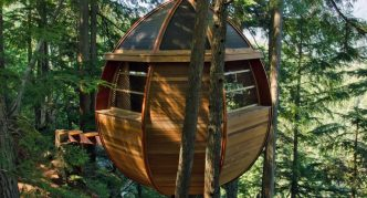 Tree House Hemloft