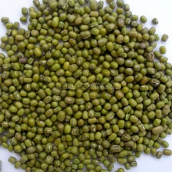Green_Moong_Whole_Aakha_Dal_Dall_Pulses_1