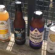 Get Cultured on Kombucha