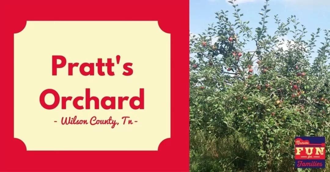 Fall guide to family fun in Nashville - Pratt's orchard