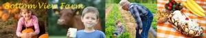 nashville-fun-for-families-bottom-view-farm